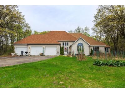 Chisago County Single Family Home For Sale: 6539 E Viking Boulevard