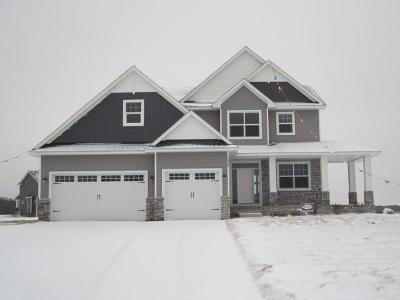 Ham Lake Single Family Home For Sale: 15339 Alamo Street NE