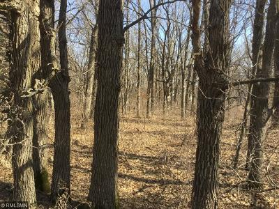 Palmer Twp MN Residential Lots & Land For Sale: $89,900