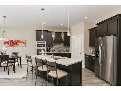 Blaine Condo/Townhouse For Sale: 10128 Kissel Court
