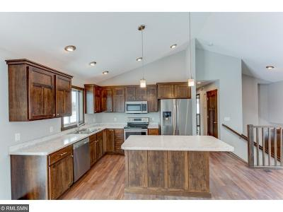 New Richmond Single Family Home For Sale: 1562 Otter Way