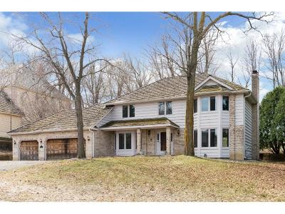 Eden Prairie Single Family Home For Sale: 10929 Mount Curve Road
