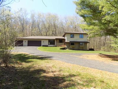River Falls Single Family Home For Sale: W9655 770th Avenue