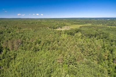 Nisswa Residential Lots & Land For Sale: Tbd Agate Lake Drive SW