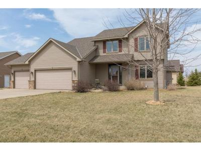 Northfield Single Family Home For Sale: 1221 Superior Drive