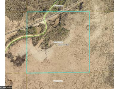 Brainerd Residential Lots & Land For Sale: 16705 N Nelson Road