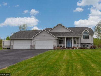 Ham Lake Single Family Home For Sale: 17232 Van Buren Street NE
