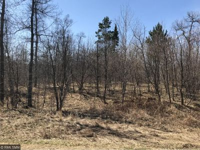 Nisswa Residential Lots & Land For Sale: Xxx Free Bird Circle