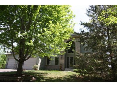 Ham Lake Single Family Home For Sale: 13411 Edison Street NE