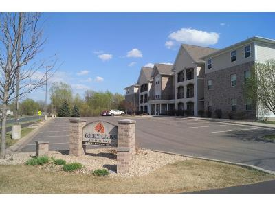Andover Condo/Townhouse Contingent: 15631 Linnet Street NW #3-309