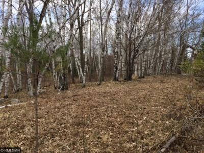 Sandstone Residential Lots & Land For Sale: Xxx 370 Avenue