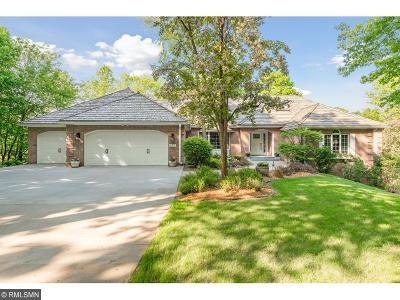 Wayzata Single Family Home For Sale: 675 Hillside Drive