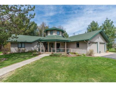 Staples Single Family Home For Sale: 27874 Oddens Road