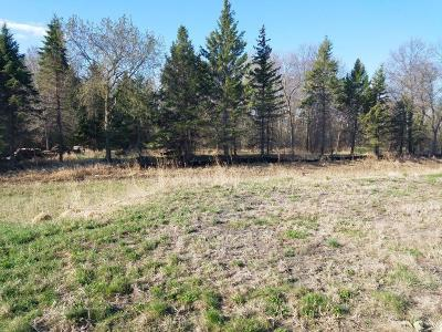 Blaine Residential Lots & Land For Sale: 3064 131st Court NE
