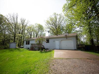 Aitkin Single Family Home For Sale: 28023 County Road 11