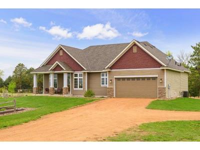 Carver County, Hennepin County, Wright County Single Family Home For Sale: 16383 Homestead Road