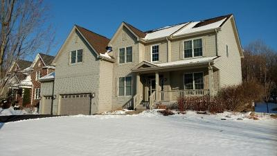 Eagan Single Family Home For Sale: 4880 Steeplechase Way