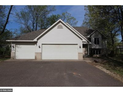 North Branch Single Family Home For Sale: 38510 9th Avenue