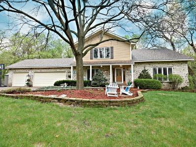 Burnsville Single Family Home For Sale: 2901 Woods Trail S