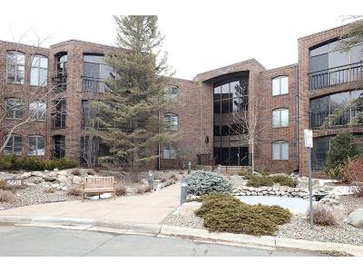 Edina Condo/Townhouse For Sale: 5601 Dewey Hill Road #112