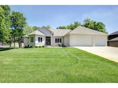 New Prague MN Single Family Home For Sale: $949,900