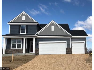 Prior Lake Single Family Home For Sale: 5039 Trillium Cove
