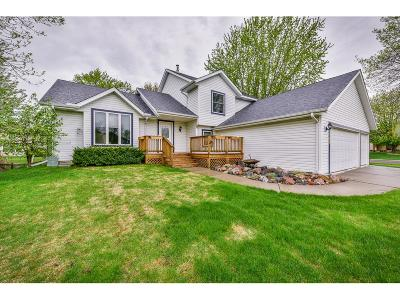 Lakeville Single Family Home For Sale: 16167 Goodview Trail