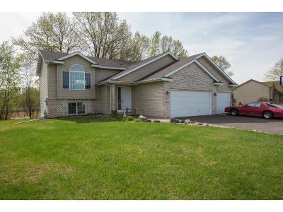 Saint Francis Single Family Home For Sale: 23255 Arrowhead Street NW