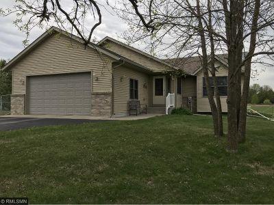 Mora Single Family Home For Sale: 2578 Little Telander Drive