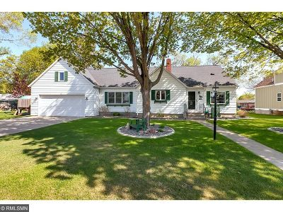 Saint Joseph Single Family Home For Sale: 213 E Able Street