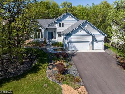Andover Single Family Home For Sale: 873 140th Lane NW