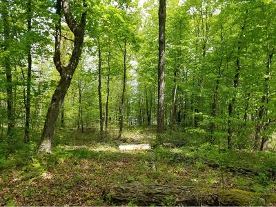 Residential Lots & Land For Sale: 30720 427th Street