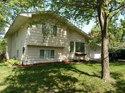 Circle Pines Single Family Home For Sale: 2 W Golden Lake Road
