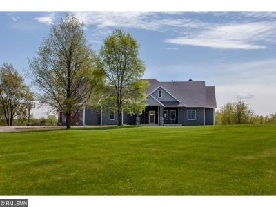 Carver County, Hennepin County, Wright County Single Family Home For Sale: 1150 Sunnyfield Road N