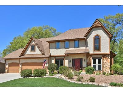 Eagan MN Single Family Home For Sale: $450,000
