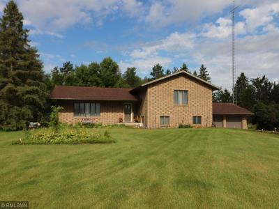 Park Rapids, Nevis Single Family Home For Sale: 11196 160th Street