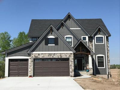 Prior Lake Single Family Home For Sale: 3436 Falcon Court