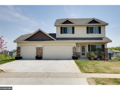 Montrose Single Family Home For Sale: 910 Cole Avenue