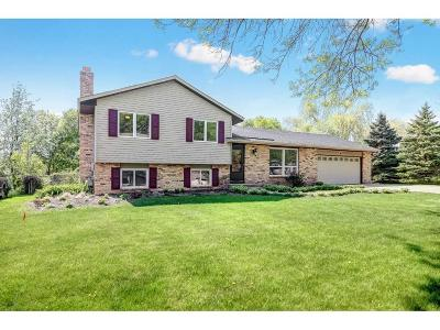 Maple Grove Single Family Home For Sale: 10475 Valley Forge Lane N