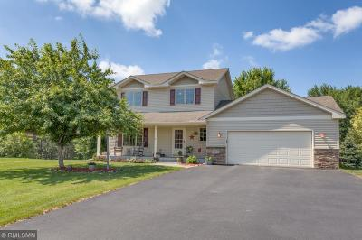 New Richmond Single Family Home For Sale: 1451 Red Hawk Court
