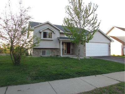 Faribault Single Family Home For Sale: 2408 Birn Hill Drive