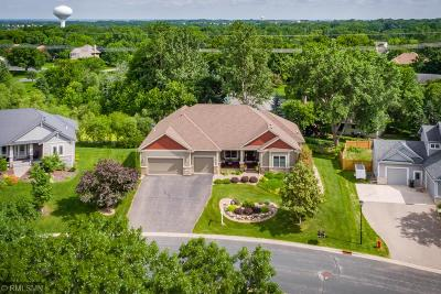 Lakeville Single Family Home For Sale: 16898 Island Terrace