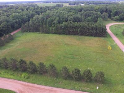 Pine City Residential Lots & Land For Sale: Xxx1 Craft Lane