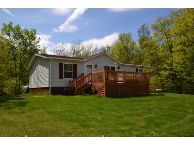 Itasca County Single Family Home For Sale: 23679 Stark Road