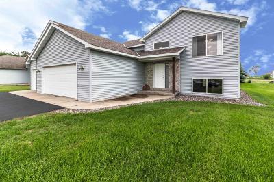Single Family Home For Sale: 1509 Killdeer Avenue