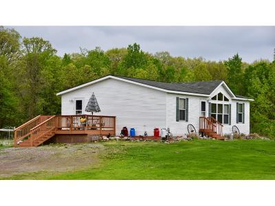 Mille Lacs County Single Family Home For Sale: 24471 140th Avenue