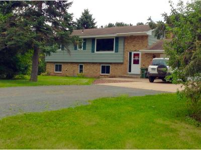 Single Family Home For Sale: 9710 Birchview Road