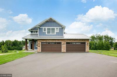 Ham Lake Single Family Home For Sale: 17348 Staples Street NE
