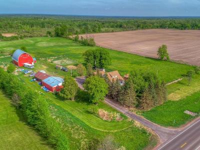 Chisago County Single Family Home For Sale: 51555 Government Road