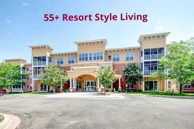 Burnsville Condo/Townhouse For Sale: 15001 Burnhaven Drive #302